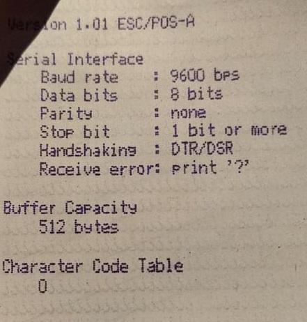 Error Printer Slip Epson TM U295 - Ngeprint Tanda Tanya Interface Serial